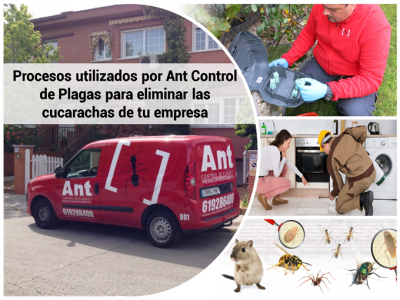 Procesos utilizados por Ant Control de Plagas