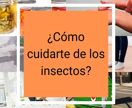 ¿Cómo cuidarte de los insectos?