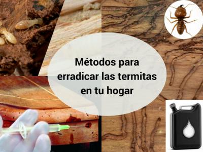 Métodos alternativos para erradicar las termitas