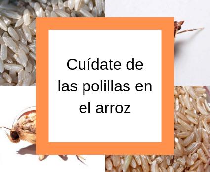 Cuídate de las polillas en el arroz
