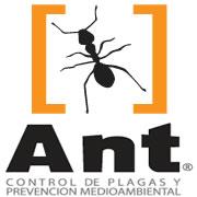 (c) Antcontroldeplagas.es